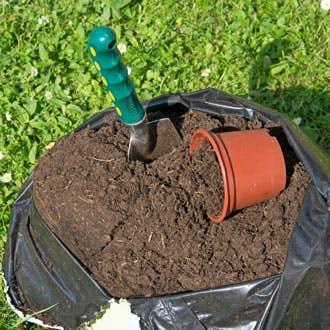 Soils and Potting Mixes