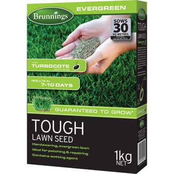 Brunnings Evergreen Tough Lawn Seed 1kg