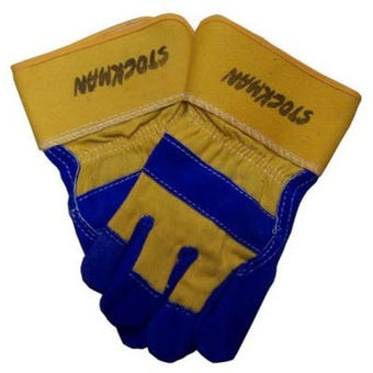 Protector Premium Mens Leather Work Glove
