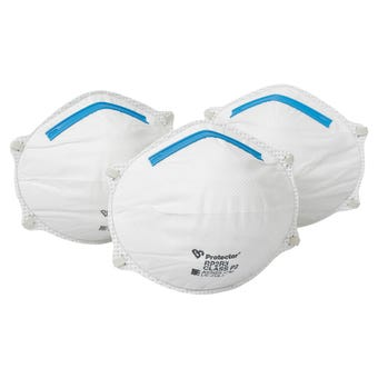 Protector Disposable Respirators - 3 Pack