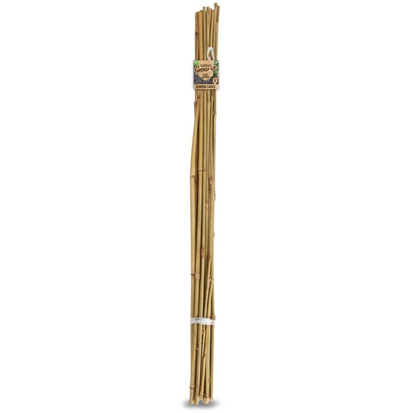 Gardman Bamboo Cane 0.6m - 20 Pack