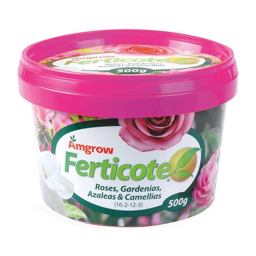 Amgrow Ferticote Roses Gardenias Azaleas & Camellias 500g