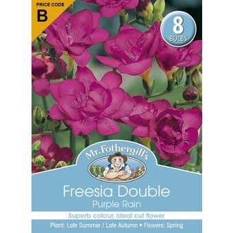 Mr Fothergill's Bulbs Freesia Double Purple Rain 8 Bulbs