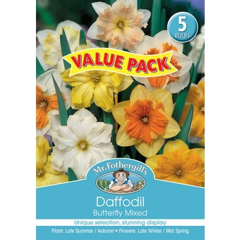 Mr Fothergill's Bulbs Daffodil Butterfly Mixed 5 Bulbs