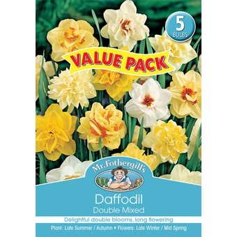 Mr Fothergill's Bulbs Daffodil Double Mixed 5 Bulbs