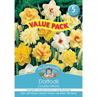 Mr Fothergill's Bulbs Daffodil Double Mixed 5 Bulbs