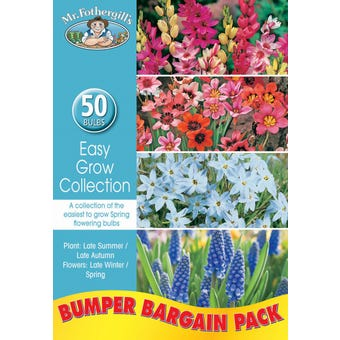 Mr Fothergill's Bulbs Easy Grow Collection