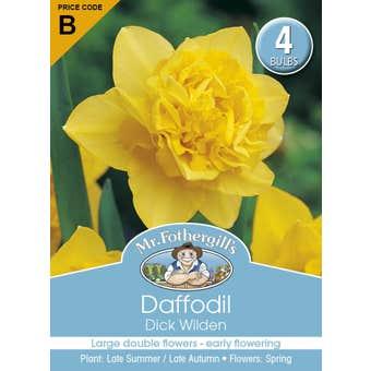 Mr Fothergill's Bulbs Daffodil Dick Wilden 4 Bulbs