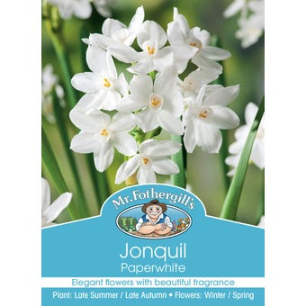 Mr Fothergill's Bulbs Jonquil Paperwhite 5 Bulbs