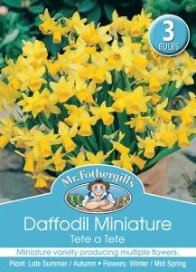 Mr Fothergill's Bulbs Daffodil Mini Tete A Tete 3 Bulbs