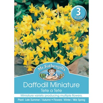 Mr Fothergill's Bulbs Daffodil Mini Tete A Tete 3 Bulbs