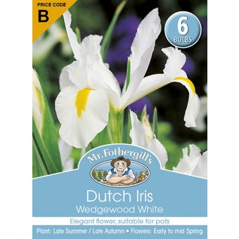 Mr Fothergill's Bulbs Dutch Iris Wedgewood White 6 Bulbs