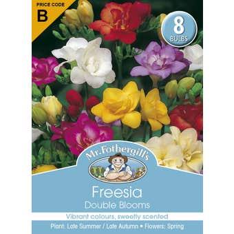 Mr Fothergill's Bulbs Freesia Double Blooms 8 Bulbs