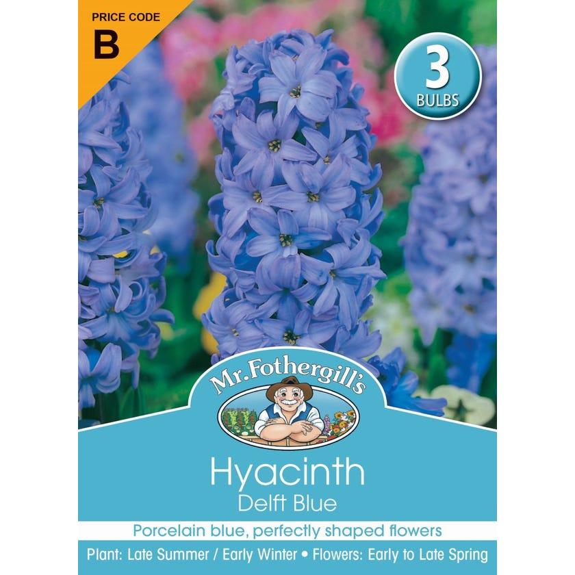 Mr Fothergill's Bulbs Hyacinth Delft Blue