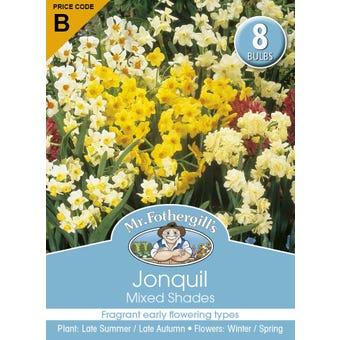 Mr Fothergill's Bulbs Jonquil Mixed Shades 8 Bulbs