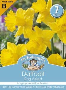 Mr Fothergill's Bulbs Daffodil King Alfred 7 Bulbs