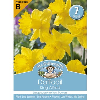 Mr Fothergill's Bulbs Daffodil King Alfred 7 Bulbs