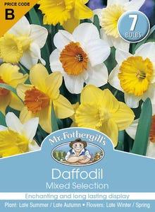 Mr Fothergill's Bulbs Daffodil Mixed 7 Bulbs