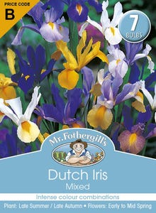 Mr Fothergill's Bulbs Dutch Iris Mixed 7 Bulbs