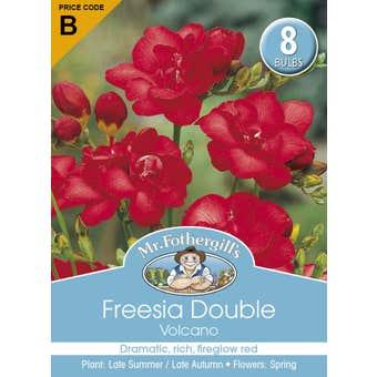 Mr Fothergill's Bulbs Freesia Double Volcano 8 Bulbs