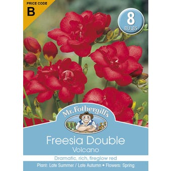 Mr Fothergill's Bulbs Freesia Double Volcano 8 Bulbs