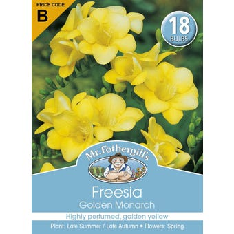 Mr Fothergill's Bulbs Freesia Golden Monarch 18 Bulbs