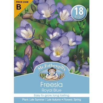 Mr Fothergill's Bulbs Freesia Royal Blue 18 Bulbs