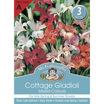 Mr Fothergill's Bulbs Gladioli Cottage Mixed 3 Bulbs
