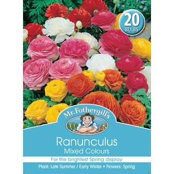 Mr Fothergill's Bulbs Ranunculus Mixed 20 Bulbs