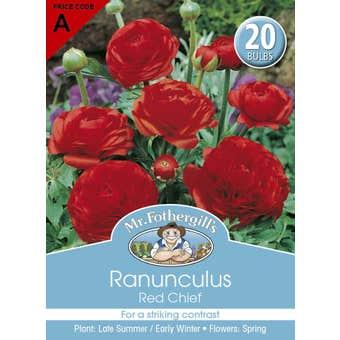 Mr Fothergill's Bulbs Ranunculus Red Chief 20 Bulbs
