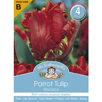 Mr Fothergill's Bulbs Tulip Parrot Rococo Red 4 Bulbs