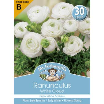Mr Fothergill's Bulbs Ranunculus White Cloud 30 Bulbs