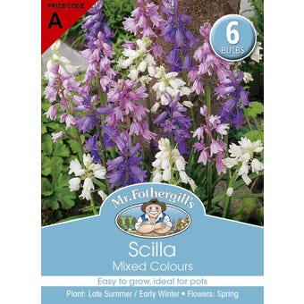 Mr Fothergill's Bulbs Scilla Mixed 6 Bulbs