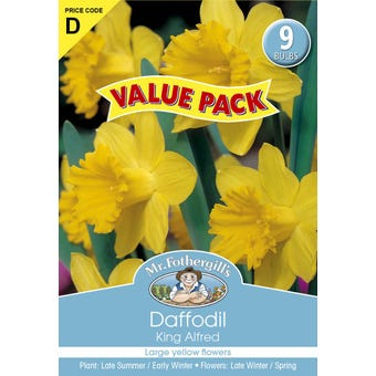 Mr Fothergill's Bulbs Daffodil Yellow 9 Bulbs