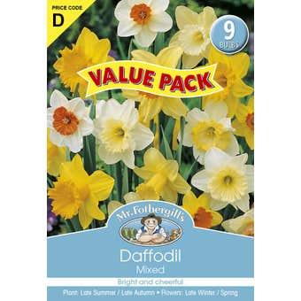 Mr Fothergill's Bulbs Daffodil Mixed 9 Bulbs