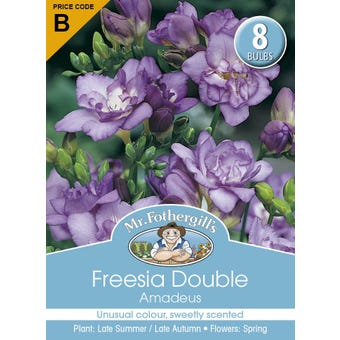 Mr Fothergill's Bulbs Freesia Double Amadeus 8 Bulbs