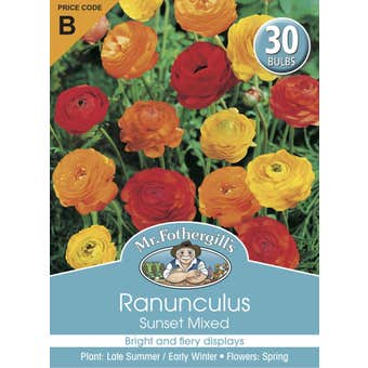 Mr Fothergill's Bulbs Ranunculus Sunset 25 Bulbs