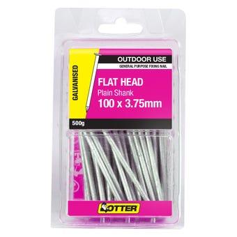 Otter Nail Flat Head Galvanised 100 x 3.75mm 500g