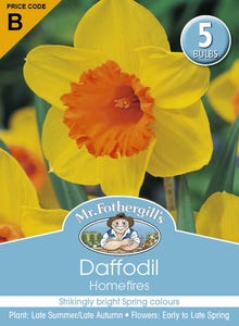 Mr Fothergill's Bulbs Daffodil Homefires 5 Bulbs