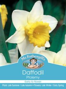 Mr Fothergill's Bulbs Daffodil Ptolemy 3 Bulbs