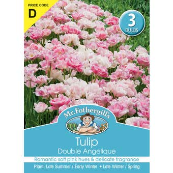 Mr Fothergill's Bulbs Tulip Double Angelique
