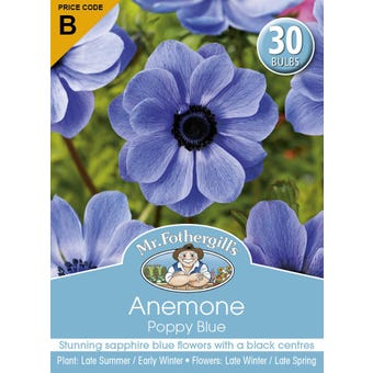 Mr Fothergill's Bulbs Anemone Poppy Blue 30 Bulbs