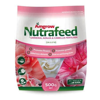 Amgrow Nutrafeed Gardenia/Azalea/Camellia Fertiliser 500g