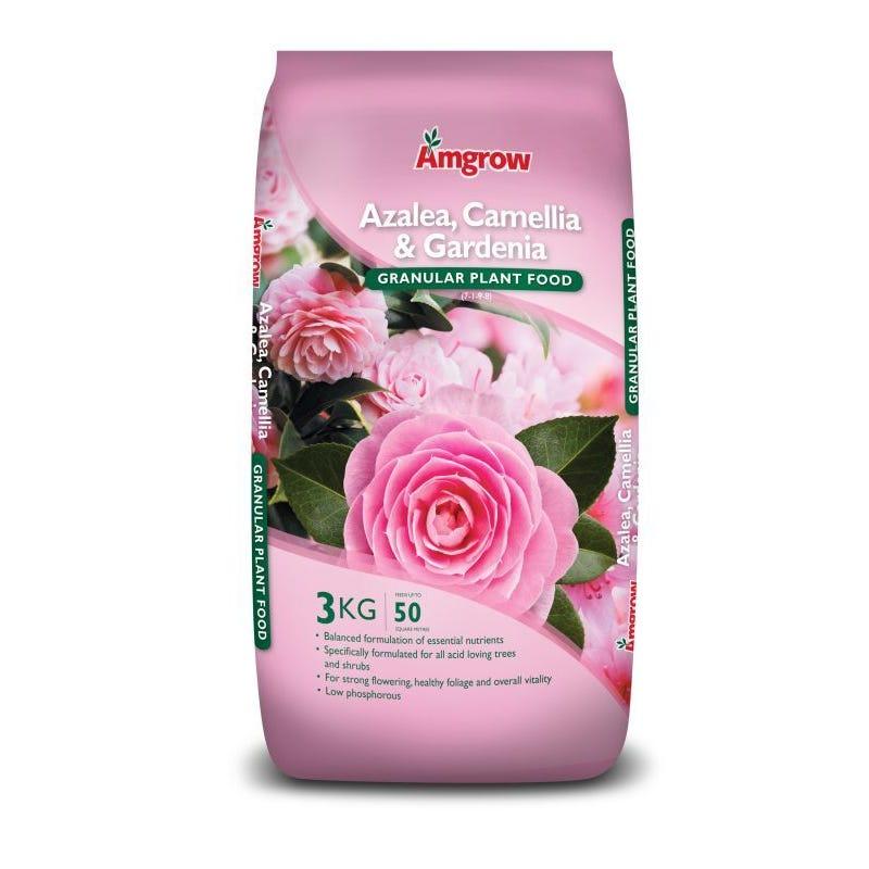 Amgrow Azalea/Camellia/Gardenia Granular Plant Food 3kg