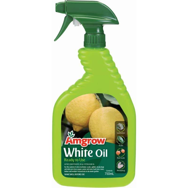 Amgrow White Oil Insecticide 750ml