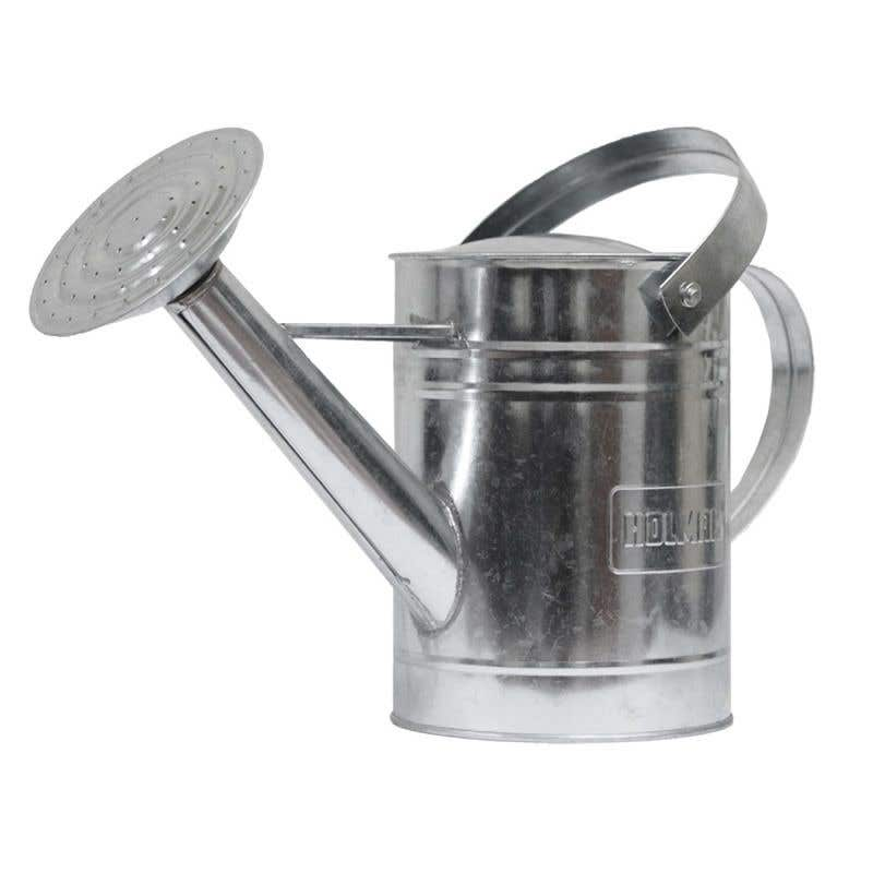 Galvanised Watering Can 9L