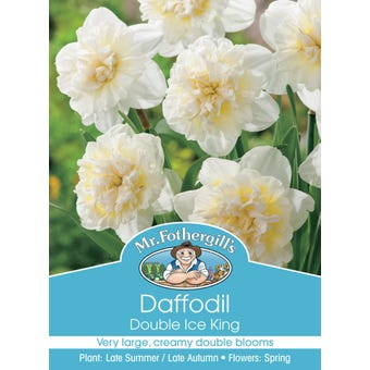 Mr Fothergill's Bulbs Daffodil Ice King 3 Bulbs