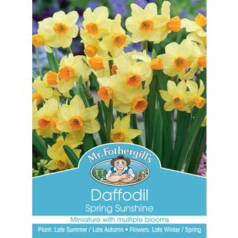 Mr Fothergill's Bulbs Daffodil Spring Sunshine 3 Bulbs
