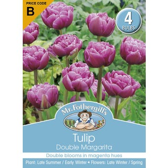 Mr Fothergill's Bulbs Tulip Margarita 4 Bulbs