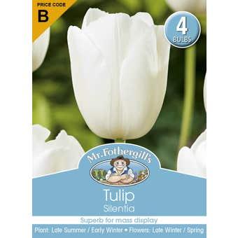 Mr Fothergill's Bulbs Tulip Silentia 4 Bulbs